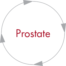 Prostate Oncology Resources