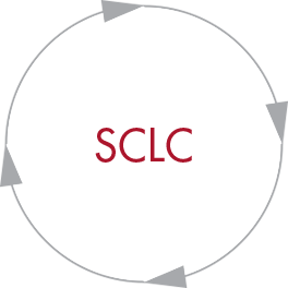 SCLC Oncology Resources
